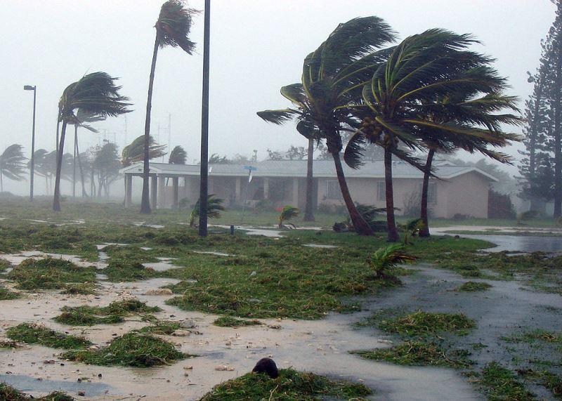 Bên Người Thân Trong Cơn Bão Irma